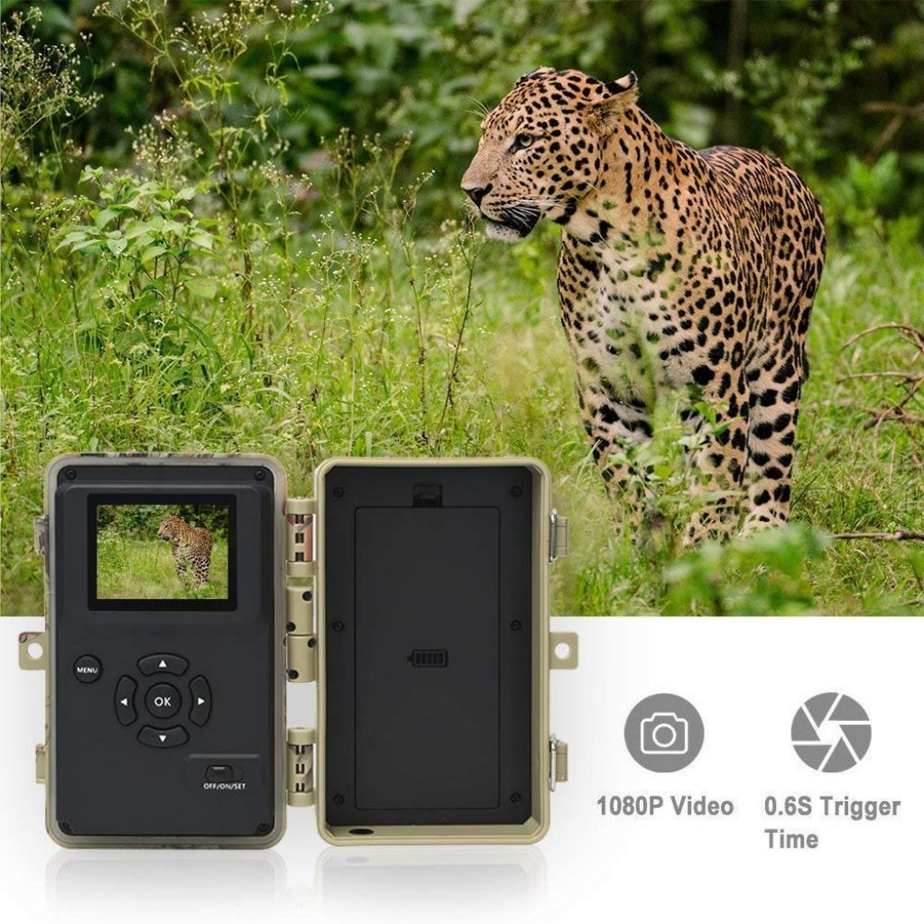digitnow camera de chasse test